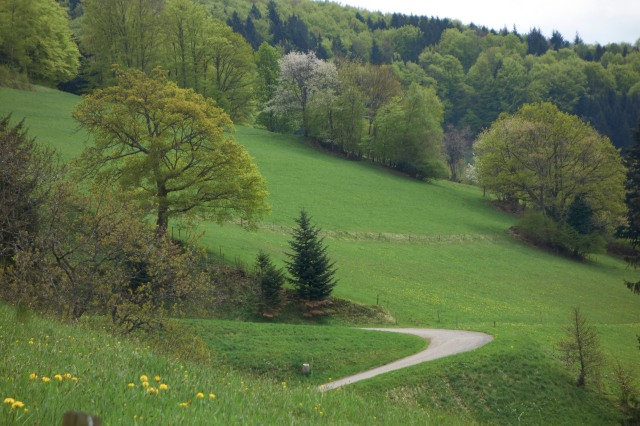 Schwarzwald Lebensweg